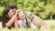 Ter animais de estimação pode melhorar a saúde
