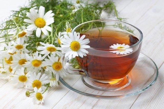 Hemorroidas: chás para beber ou fazer banhos de assento