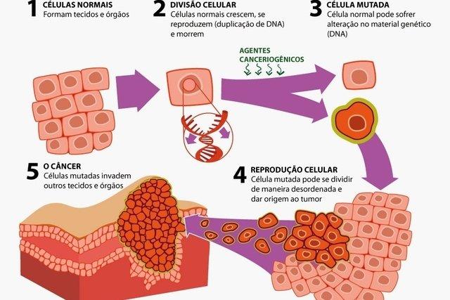 Processo de formação do câncer