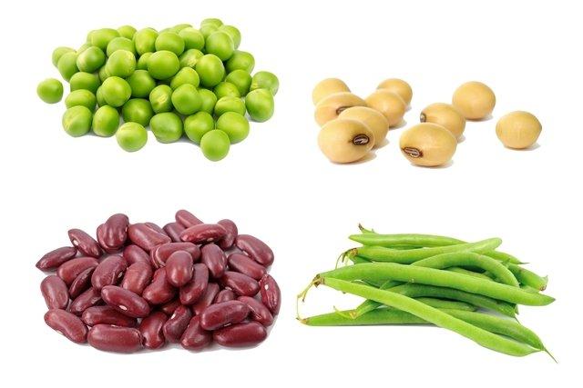 Alimentos ricos em proteína vegetal