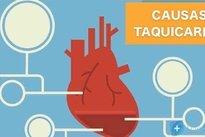 frequencia cardiaca bebe 7 meses