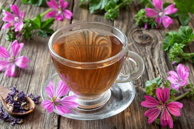 Malva: benefícios e como preparar o chá