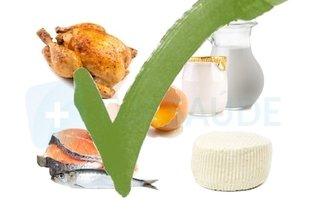 Alimentos de origem animal permitidos na dieta da proteína