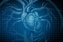 Frecuencia cardiaca en ninos de 10-12 anos