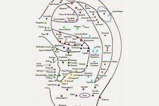 Mapa dos pontos da auriculoterapia francesa