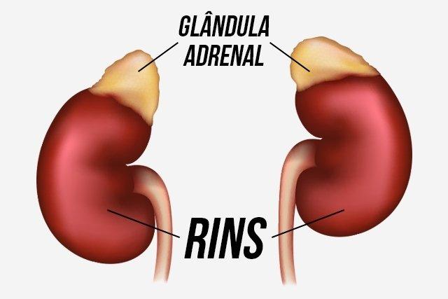 O que é Fadiga adrenal e como tratar