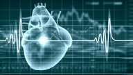 What is a normal heart rate, when is it low or high and how to normalize it