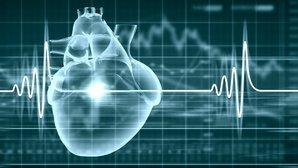 Qual a frequência cardíaca normal, alta ou baixa