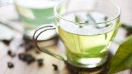 Para qué sirve el Té de Boldo y cómo prepararlo