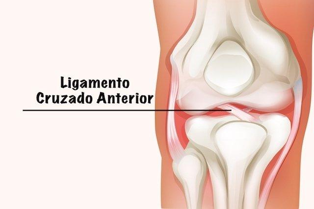 fortalecer musculos joelho