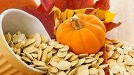 10 principais remédios para vermes e como tomar