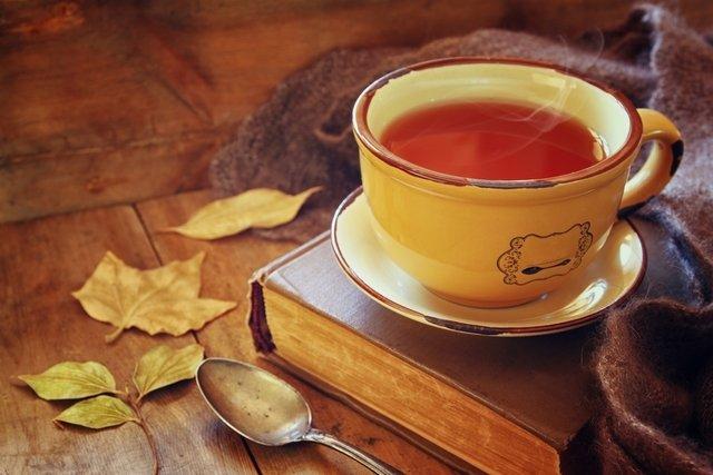 7 Calmantes naturais para Ansiedade, Insônia e Nervosismo