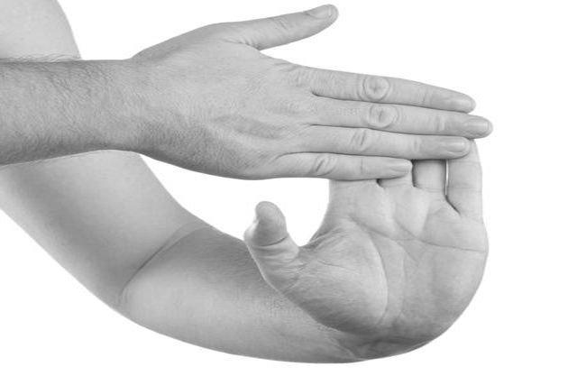 8 Alongamentos para combater a Dor nas Costas no Trabalho