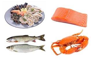 Peixes ricos em vitamina B12