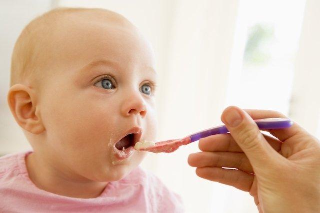 Receitas de papinhas para bebês de 8 meses