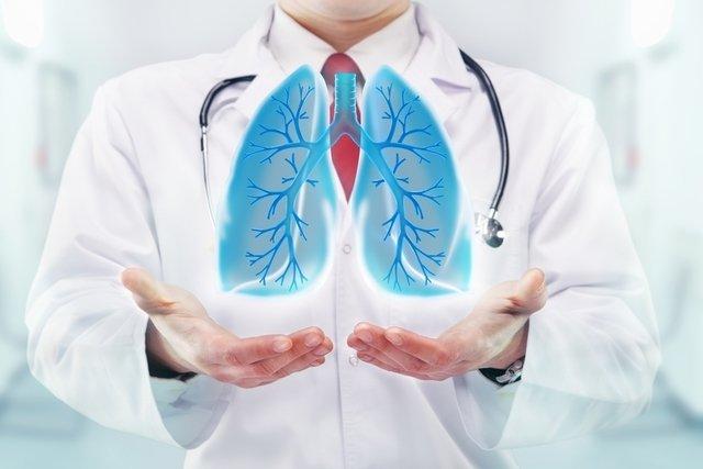 Sistema respiratório: como funciona, anatomia e principais doenças