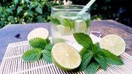 Erva-cidreira: 10 benefícios e como fazer o chá