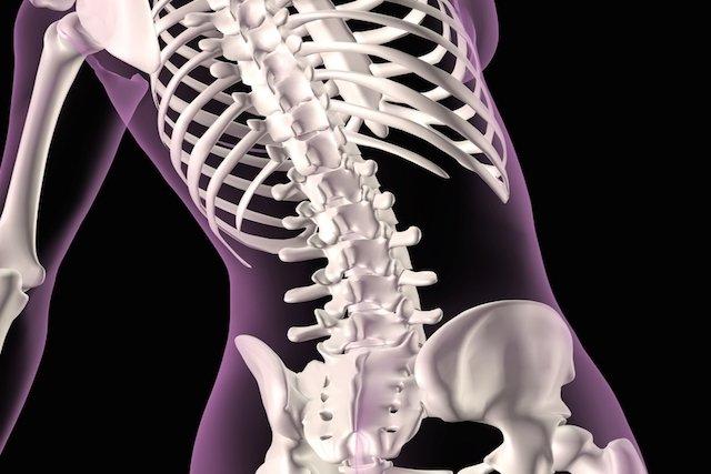 Densitometria óssea: o que é e como é feita