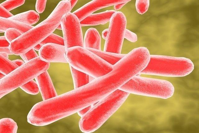 Tuberculose tem cura?