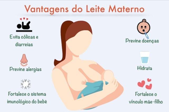 Como alimentar o bebê dos 0 aos 6 meses