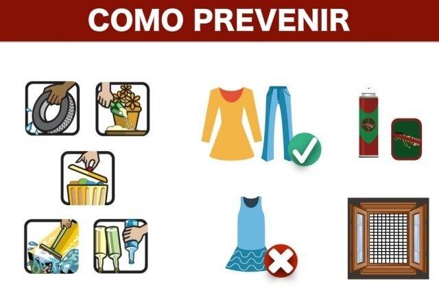 Como se proteger da Zika durante a gravidez
