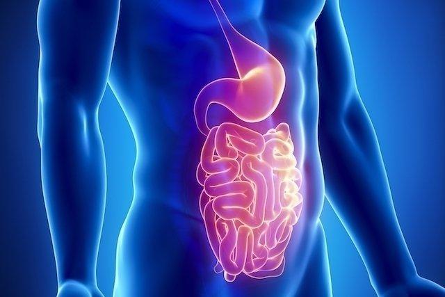 En estomacal de tratamiento ninos infeccion