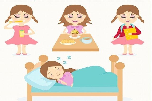 O que é o ciclo circadiano
