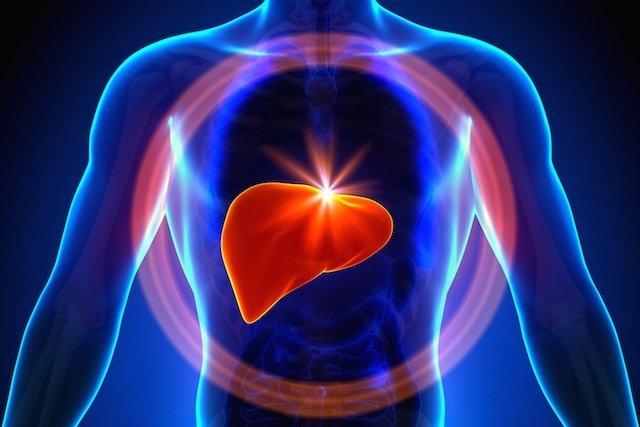 Hemangioma no fígado (hepático): o que é, sintomas e como tratar
