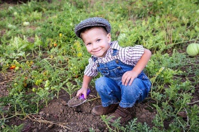 Quais as doenças transmitidas pelo solo e como evitar