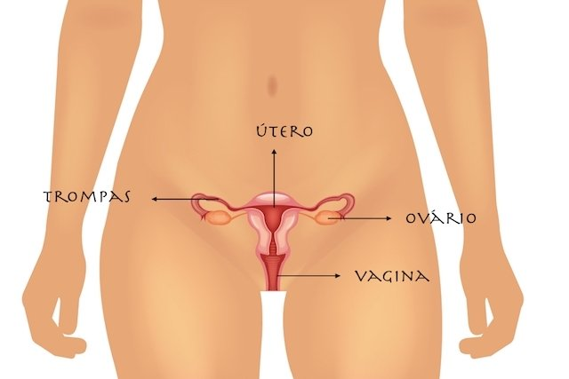 Infamação da vagina, útero, trompas e ovários