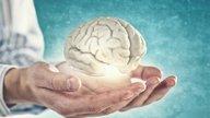 7 curiosidades sobre o cérebro humano