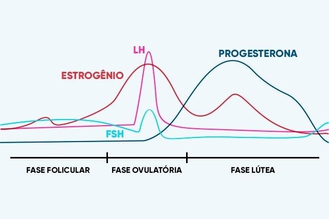 Entenda tudo sobre o Ciclo Menstrual (com calculadora)