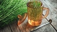 6 best herbal teas for urinary tract infection (UTI)