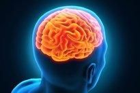 vaso sanguíneo em colapso no cérebro