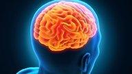 Entenda o que é o tumor cerebral