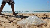 ¿Qué hacer en caso de picadura de medusa?