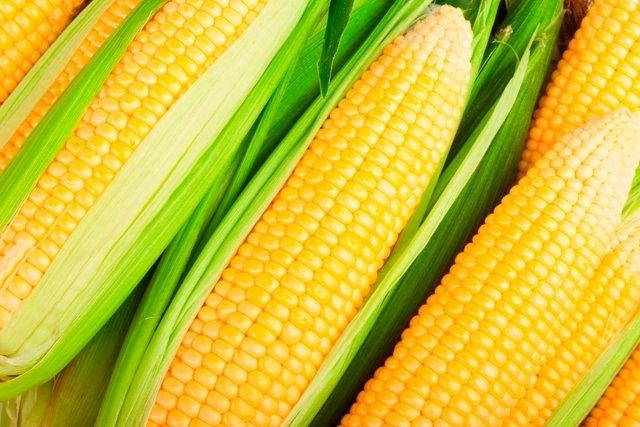 7 principais benefícios do milho para a saúde (com receitas saudáveis)