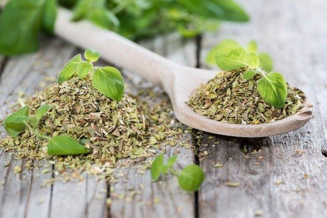 Ervas Aromáticas para diminuir o Sal das refeições