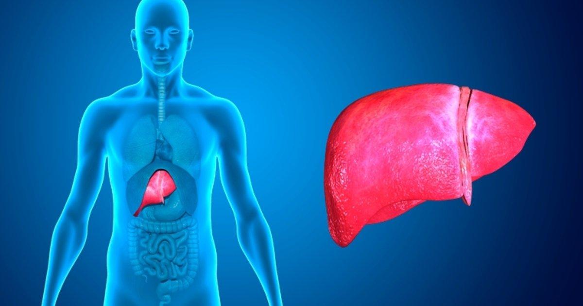 7 causas de dolor en el hígado - Tua Saúde