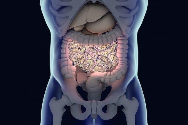 Vitamina K - funções e onde encontrar