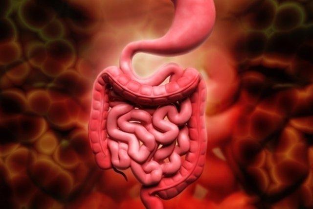 Qué puede causar heces con sangre de color rojo vivo y cómo tratar