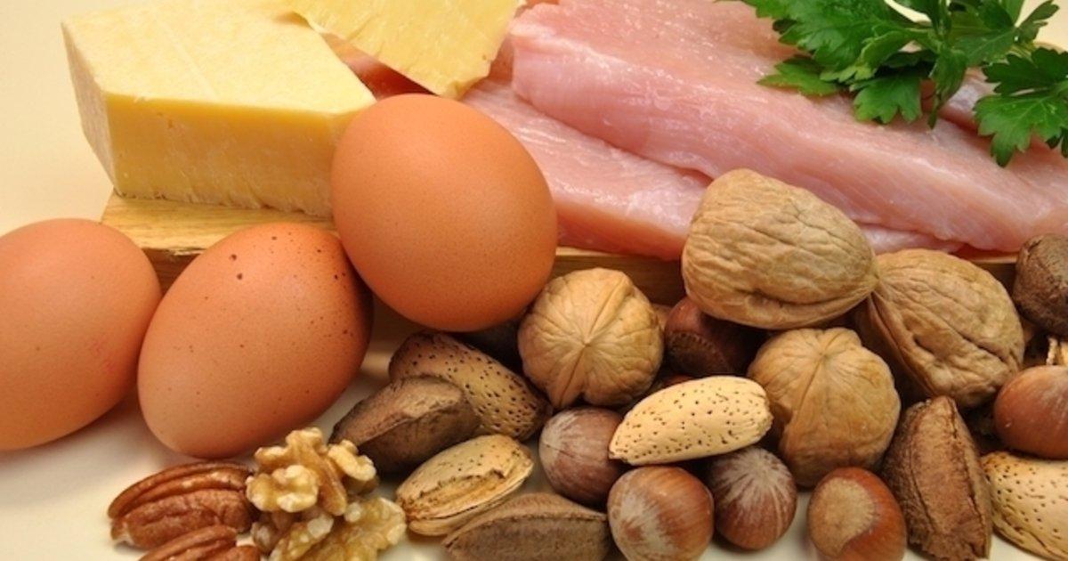 que son las proteinas de origen animal y vegetal