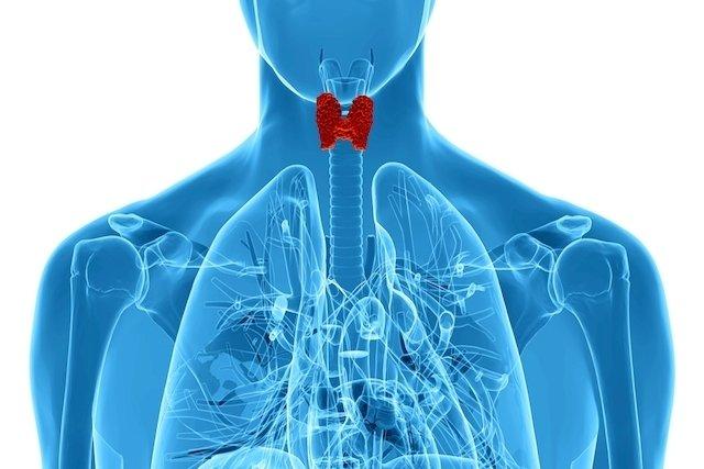 7 principais sintomas de câncer de tireoide