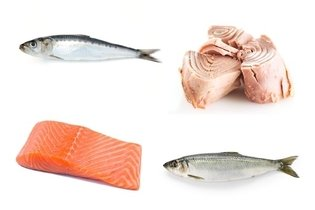 Alimentos de origam animal ricos em ômega 3
