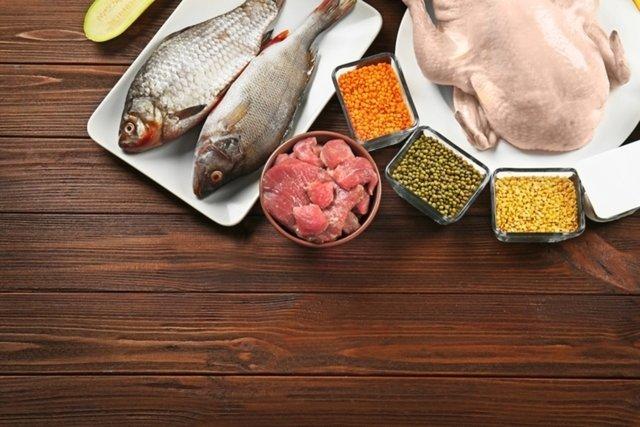 Principais alimentos ricos em proteína