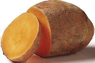Batata Yacon tem fibras e é Boa para Diabetes