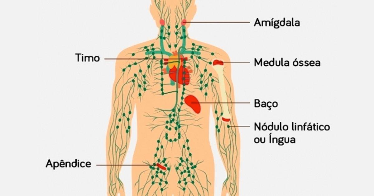 cancer linfom hodgkin