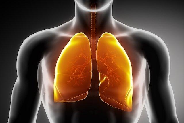 Como é feito o Transplante de pulmão e quando é necessário