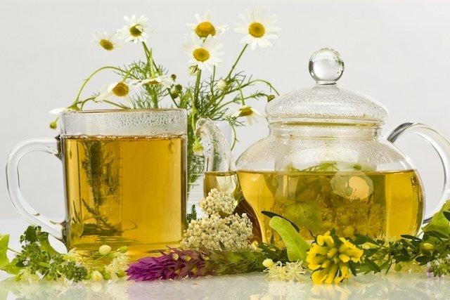 7 chás para melhorar a digestão e combater gases intestinais