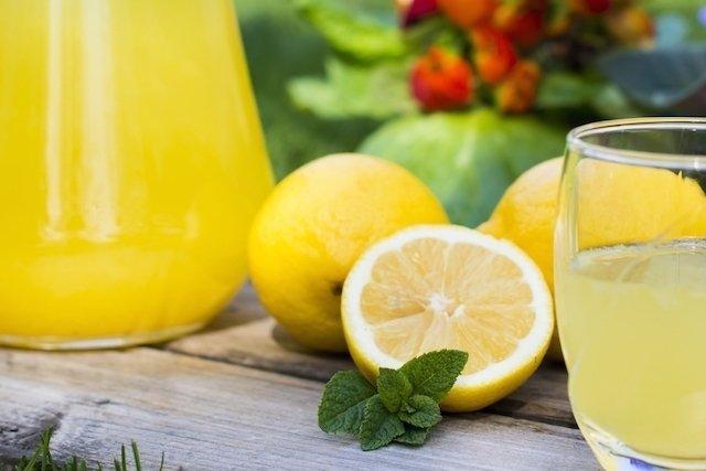 Benefícios do chá de limão com alho, mel ou gengibre